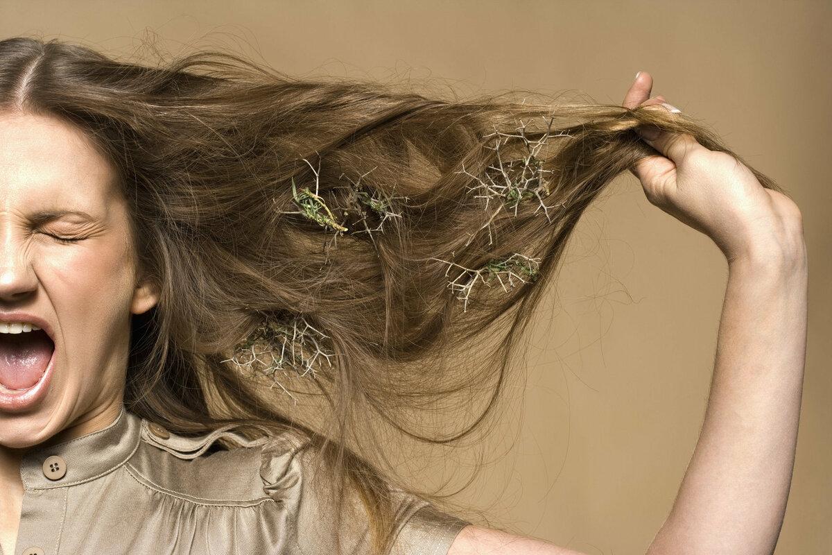Норма выпадения волос в день у женщин и мужчин