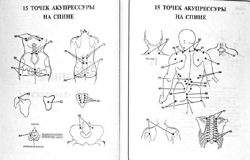 Что такое биологически активные точки на самом деле?