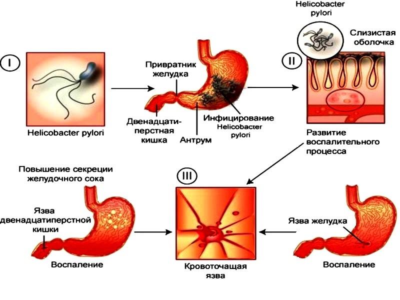 Аллантоин в косметике: польза и вред  для кожи лица, лечебные и косметические свойства