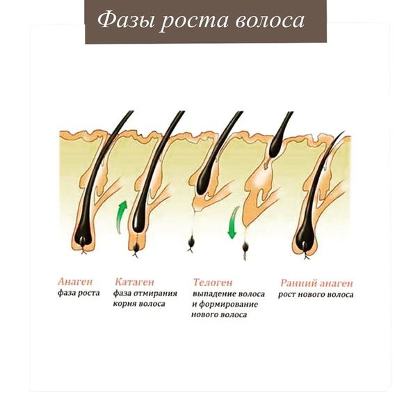 Медленный рост волос у мужчин: эффективные средства