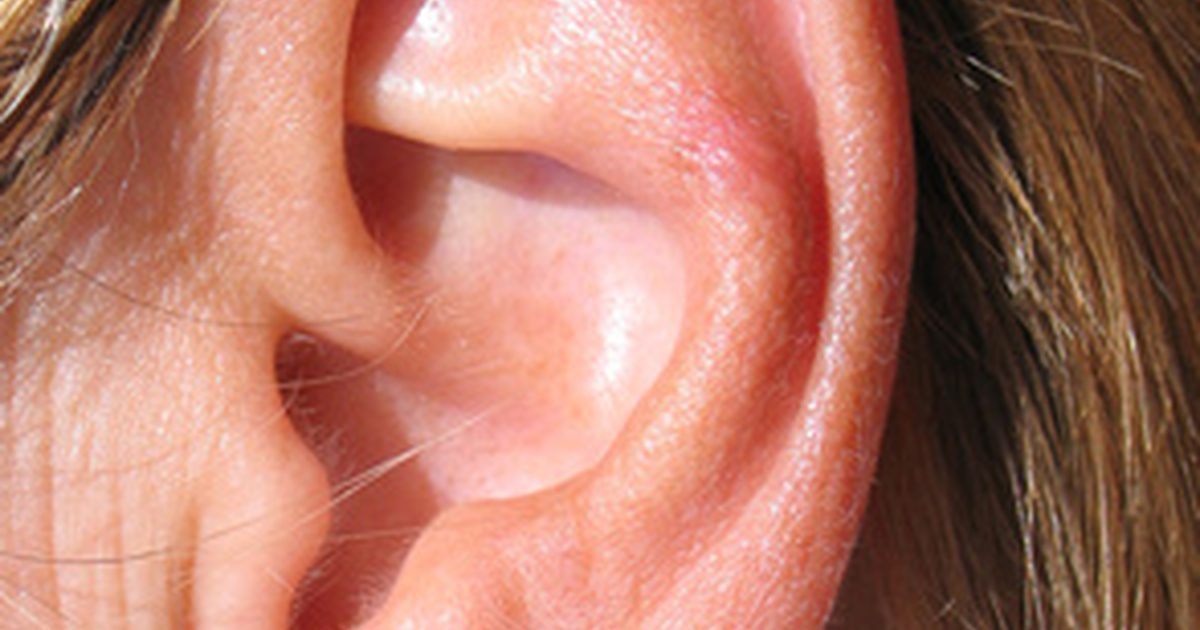 Гипертрихоз ушной раковины