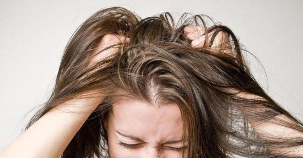 Если чешется голова и выпадают волосы: причины и лечение