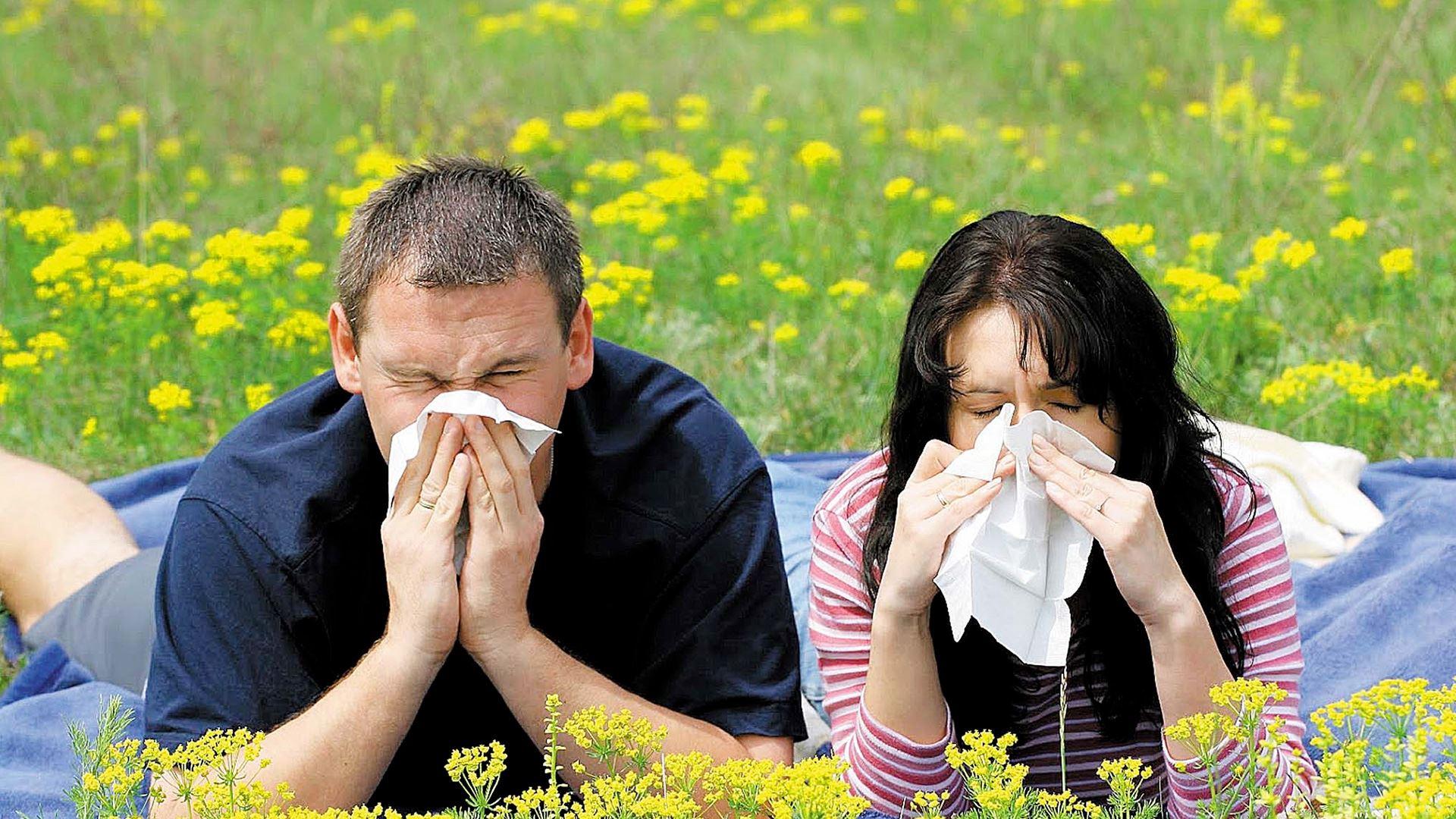 Контактный дерматит: причины, симптомы, лечение, фото