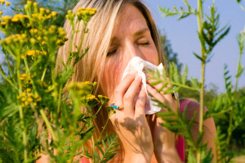 Контактный дерматит. фото, симптомы и лечение, аллергический, простой. мази, крема, лечение народными средствами