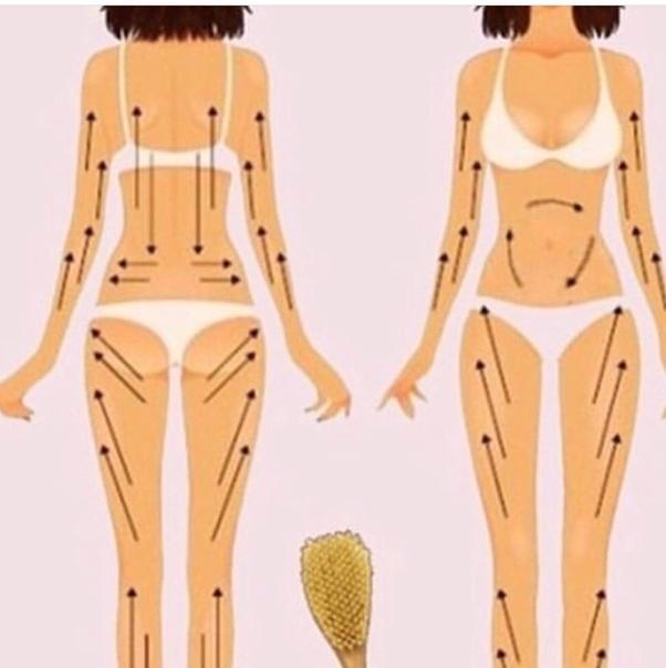 Как делать массаж сухой щёткой и есть ли от него толк
