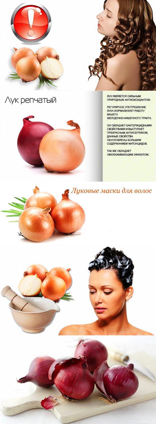 Луковая маска для волос против выпадения рецепты с лопухом, медом, лимоном отзывы