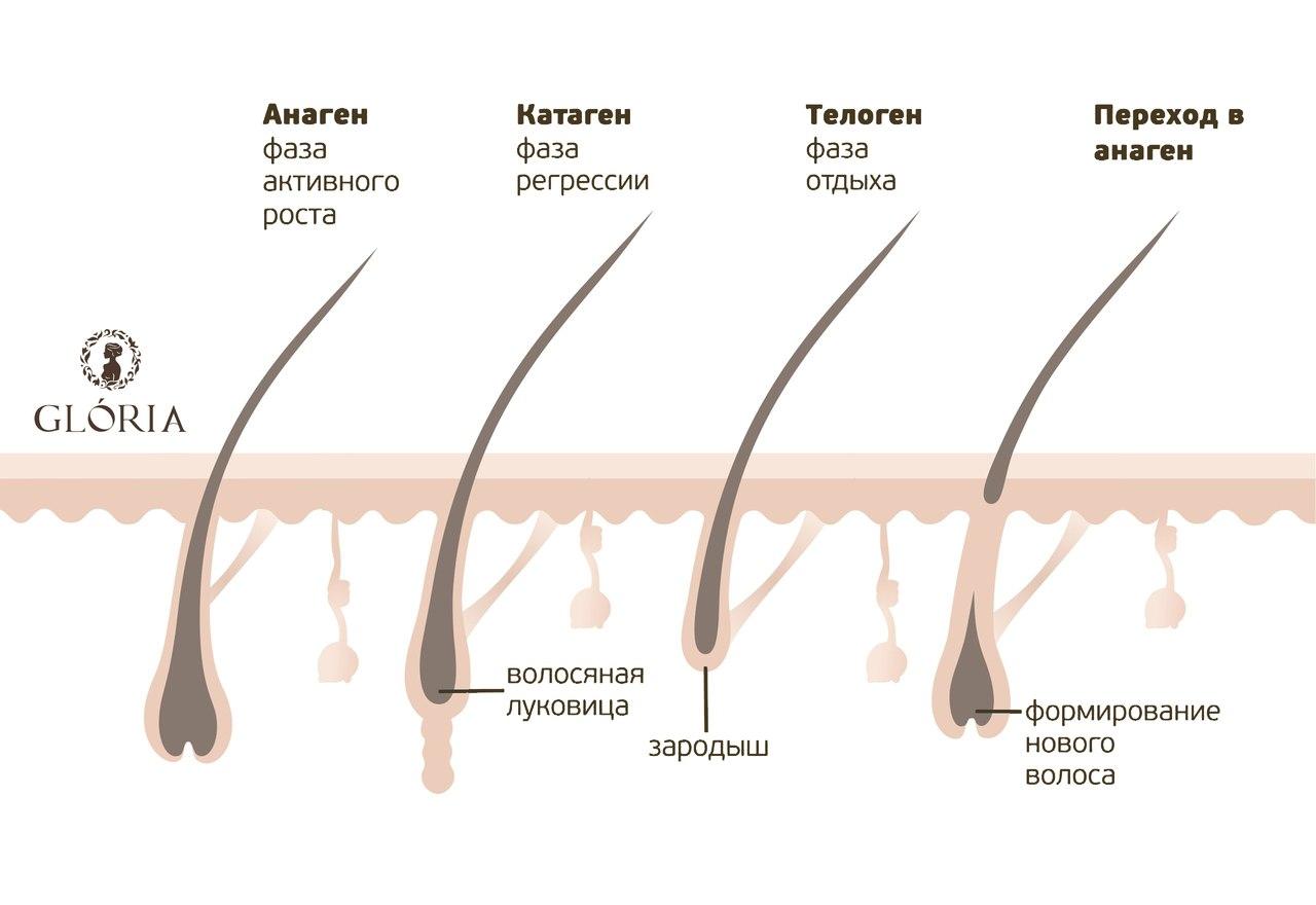 Как выбрать крем для замедления роста волос?
